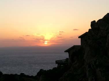 Costa Paradiso Edera
