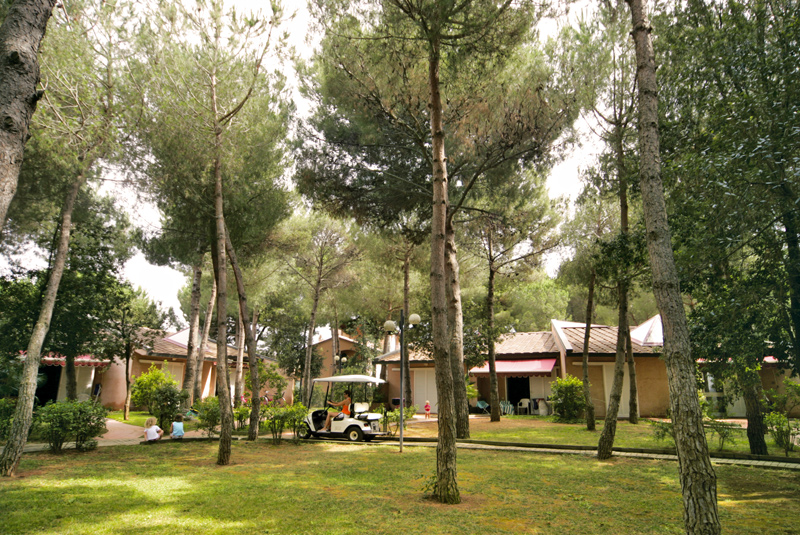 Residence Riva degli Etruschi